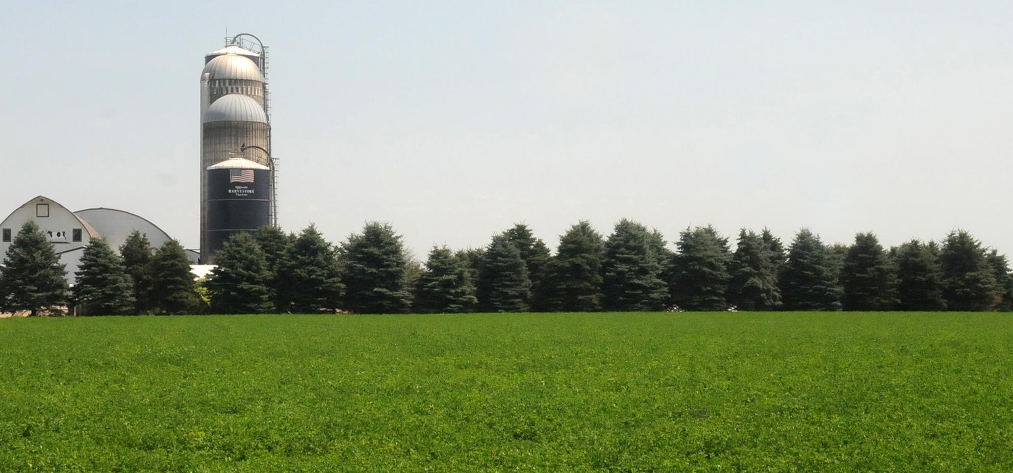 Rural-banner